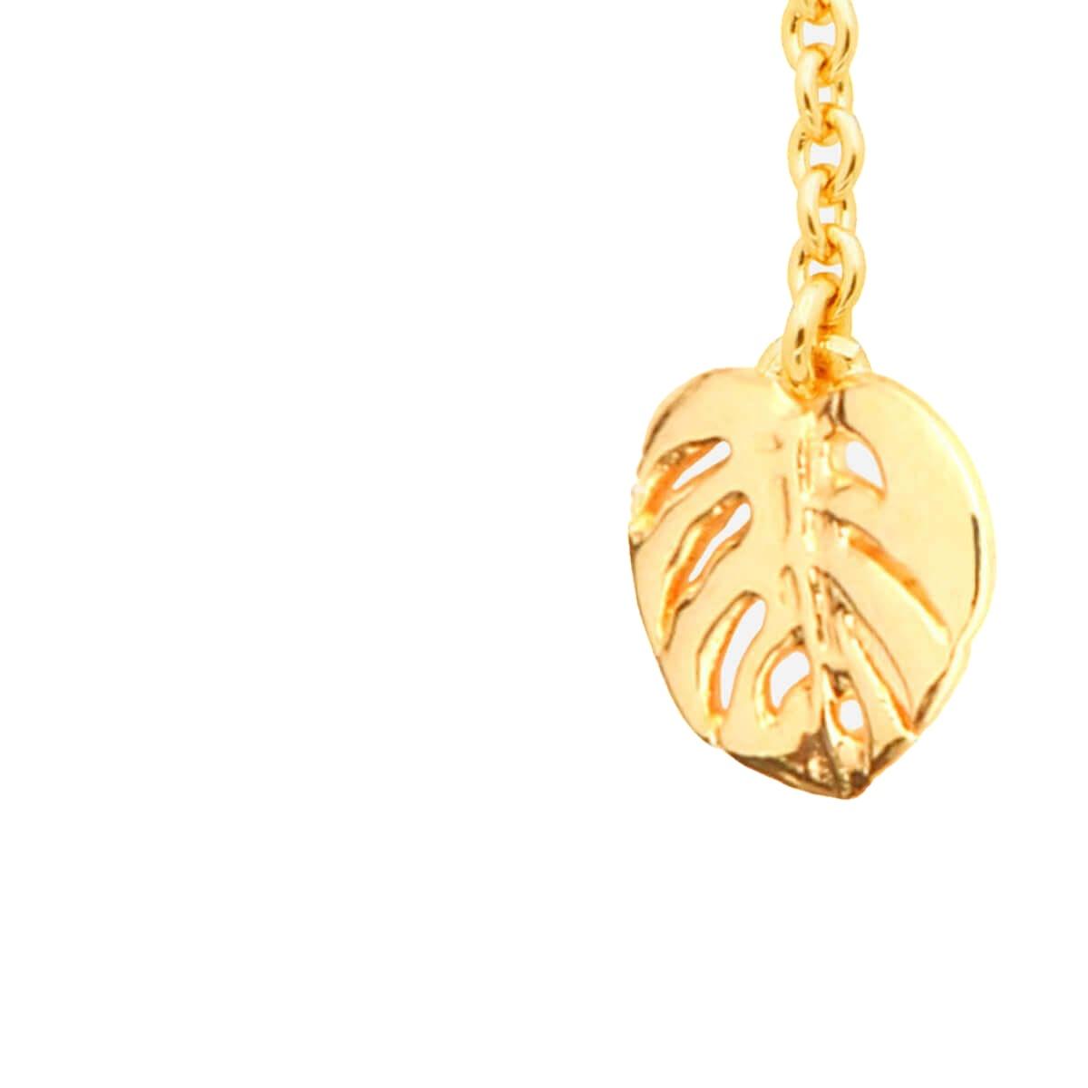 Costilla de Adán Oro